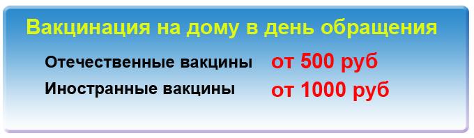 Вакцинация собак на дому. Прививки собакам в Москве