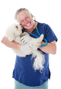 Хороший ветеринар в Москве в нашей клинике